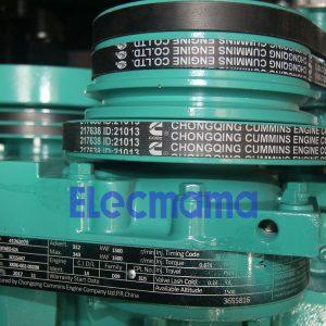 Cummins engine belt 217638