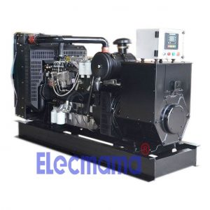 1006TG2A lovol diesel generator