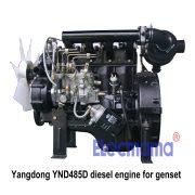 YND485D Yangdong diesel engine -3