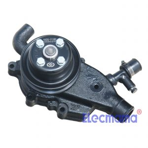 Y4105D Yangdong water pump