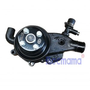 Yangdong Y4100D water pump