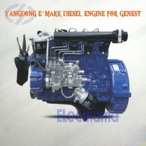 Yangdong diesel engines with E-Mark certificate