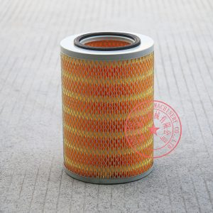 Yangdong Y4102ZLD air filter