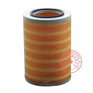 Yangdong Y4105ZLD air filter