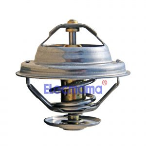 Yangdong Y4102ZLD thermostat
