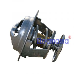 4DW81-23D FAW thermostat