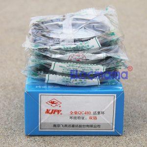Quanchai QC480Q piston rings