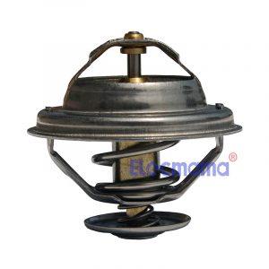 Yangdong Y4102D thermostat