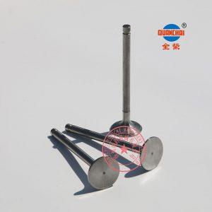 Quanchai QC380D intake valves
