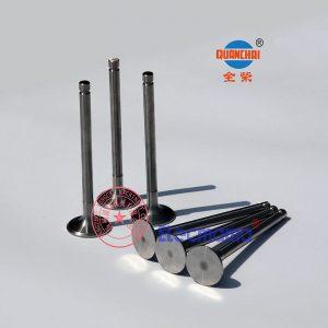 Quanchai QC385D intake valves and QC385D exhaust valves