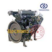Yangdong YD480D diesel engine -4