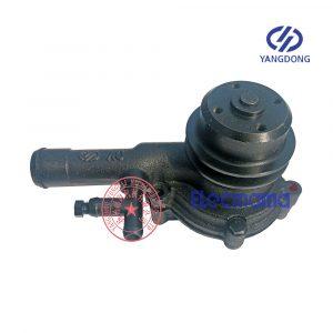 Yangdong YD380D water pump