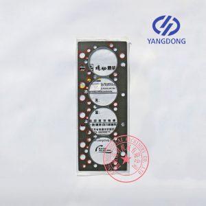 Yangdong Y4102ZLD cylinder head gasket