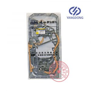 Yangdong Y4102ZLD overhaul gasket kit