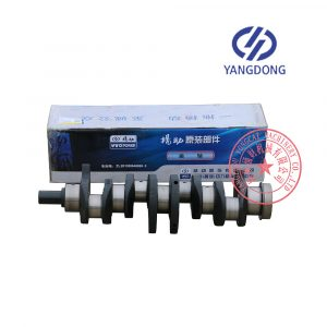 Y4102D Yangdong diesel engine crankshaft