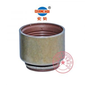 Quanchai QC480Q valve oil seals