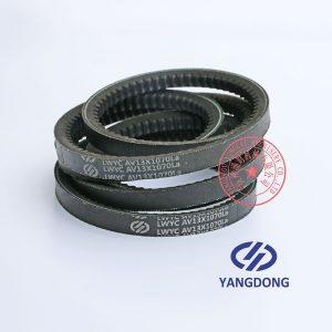 YD480ZLD Yangdong engine belt