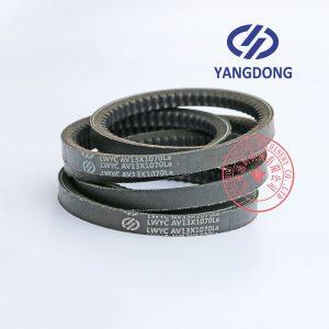 Yangdong YD480ZLD engine belt