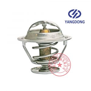 Yangdong YD480ZLD thermostat